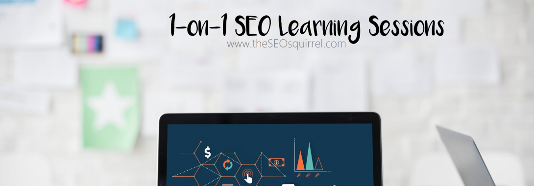 1-on-1 SEO Learning Sessions
